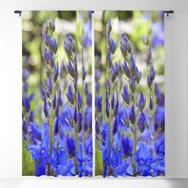 Starry Blue Blackout Curtain