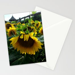 Followers of the Sun Stationery Cards