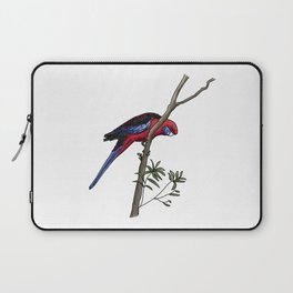 Crimson Rosella Laptop Sleeve