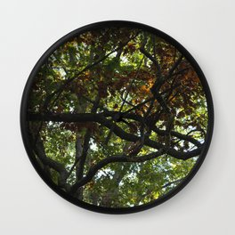 Twisted Limbs Wall Clock