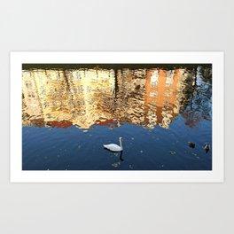 Reflector Swan III Art Print