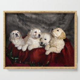 Cute labrador puppies Serving Tray