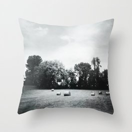hay Throw Pillow