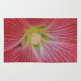 Heart of a Hollyhock Blossom Rug