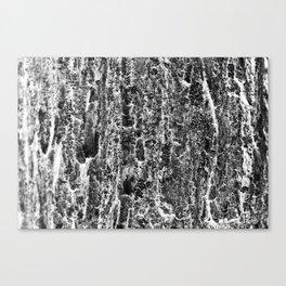 brainscan Canvas Print