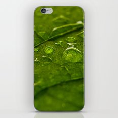 Green Bubbles 2 iPhone & iPod Skin
