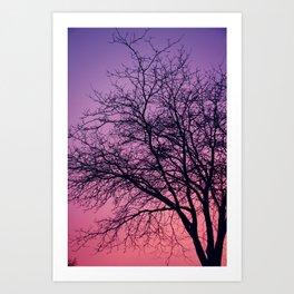 Purple Peach Sunset Art Print