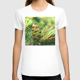 Dwarf cone T-shirt