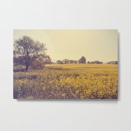 Vintage Field  Metal Print