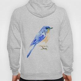Eastern Bluebird Hoody
