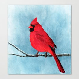 red looks good on me Canvas Print