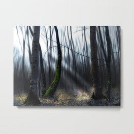 Searching the light Metal Print