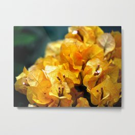 The sun's light Metal Print