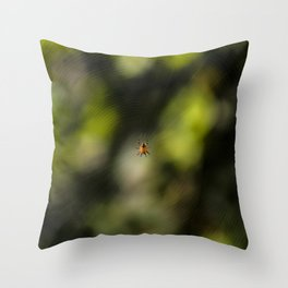 I Found It On The Web Throw Pillow