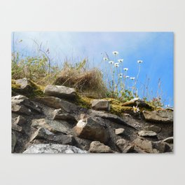 Flowers Upon a Castle Canvas Print
