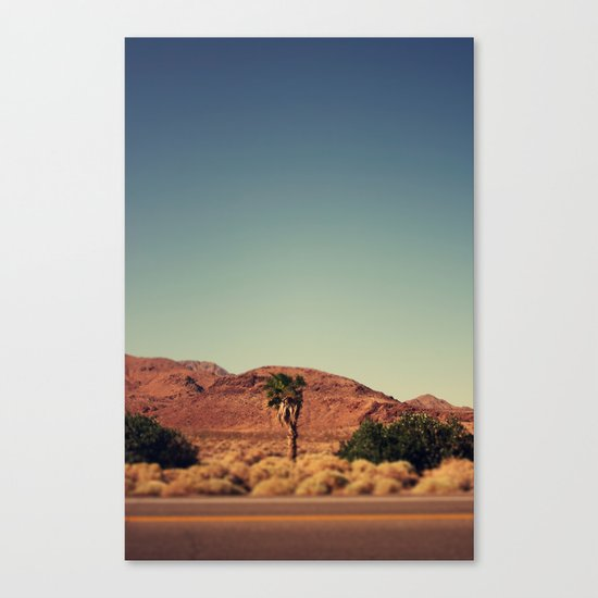Joshua Tree. Canvas Print