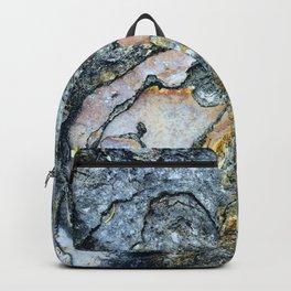 Florida Sandstone Pattern #1 Backpack