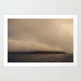 Seagulls in the mist. Art Print