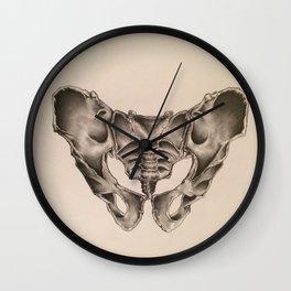 Original Pelvic Bone Pencil Drawing Wall Clock