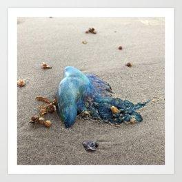 "Jellyfish ""Portuguese Man Of War"" on Galveston Island Beach Art Print"