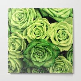 Green Roses Metal Print