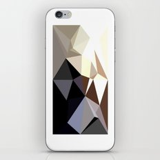 Geometric III iPhone & iPod Skin