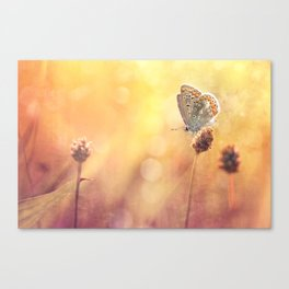 Memories... Canvas Print