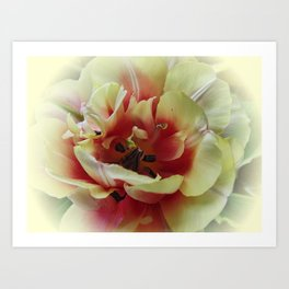 Blending with the Tulip Art Print