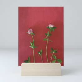 Red clover | Floral photography Mini Art Print