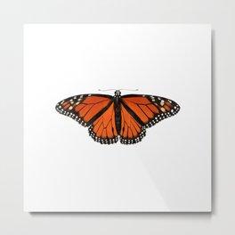 Monarch (Danaus plexippus) Metal Print