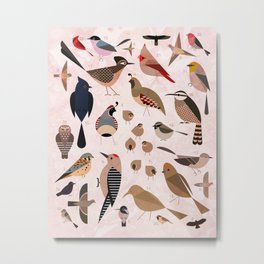 Birds of the Sonoran Desert Metal Print