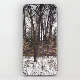 Snowy Woods iPhone Skin