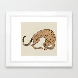 Cheetah Framed Art Print