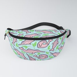 Sweet Pink Fanny Pack