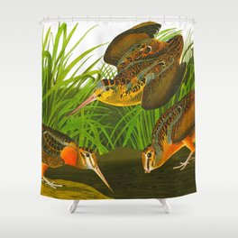 American Woodcock Audubon Birds Vintage Scientific Hand Drawn Illustration Shower Curtain