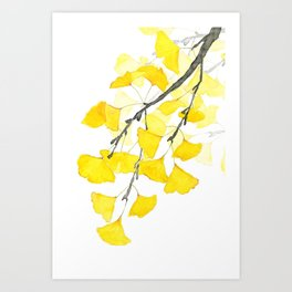 Golden Ginkgo Leaves Art Print