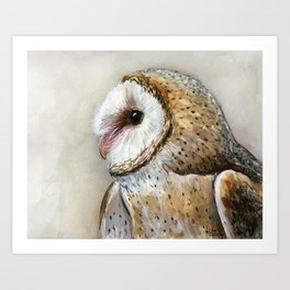 Barn Owl Watercolor, Birds Of Prey Wild Animals Owls Art Print