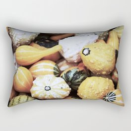 Autumn Gourds Rectangular Pillow