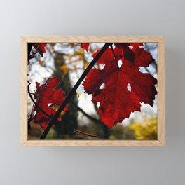 Vivid Red Leaves in Autumn Framed Mini Art Print