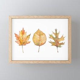 Autumn Oak Maple & Birch Framed Mini Art Print