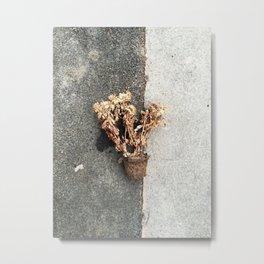 endlessness Metal Print