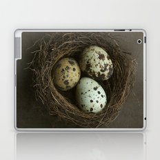 Speckled Eggs and Nest Laptop & iPad Skin