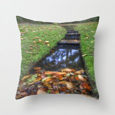 Autumn Waters Throw Pillow