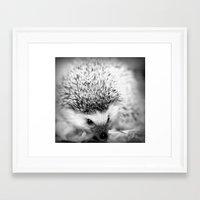 hedgehog Framed Art Prints featuring hedgehog by Bunny Noir