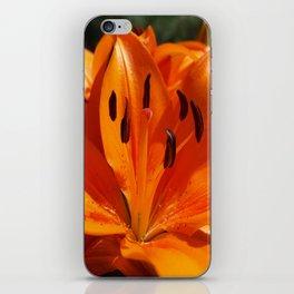 Tangerine Dreams iPhone Skin