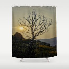 Lighting My Branches Shower Curtain