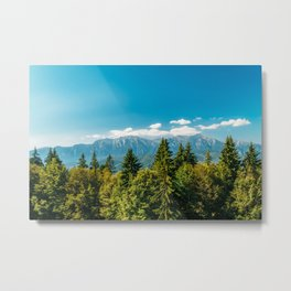 Carpathian Mountains Landscape, Summer Landscape, Transylvania Mountains, Forests Of Romania, Print Metal Print