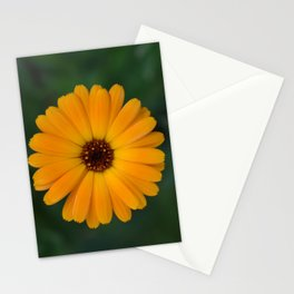 Marigold flower 4 Stationery Cards