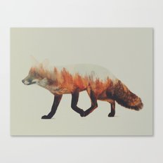 Norwegian Woods: The Fox Canvas Print