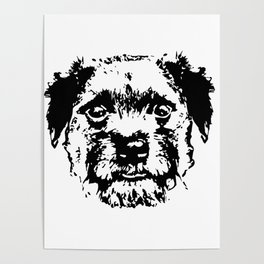 BORDER TERRIER DOG Poster
